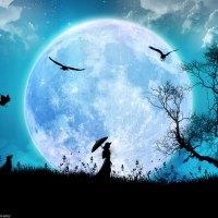 Soneto à lua - Vinicius de Moraes